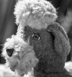 Spielzeughund Rex als Urvater für IVR